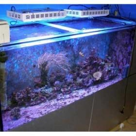 165W LED Aquarium Lights For Fish Tank Hot Sale New Zealand -1