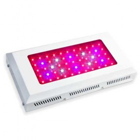 Full Spectrum 165W LED Grow Light Hot Sale Auckland -1