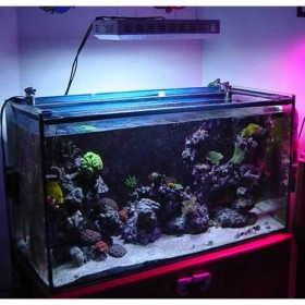 300w LED Aquarium Lighting For Growing Corals Commercial Lighting 1