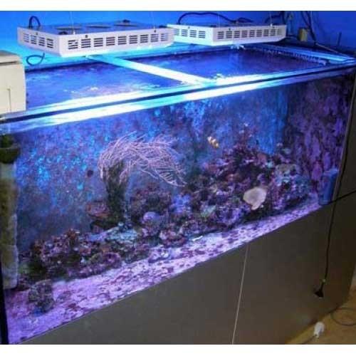 Aquarium for sale nz 165w led aquarium lights for fish for Fish tanks on sale