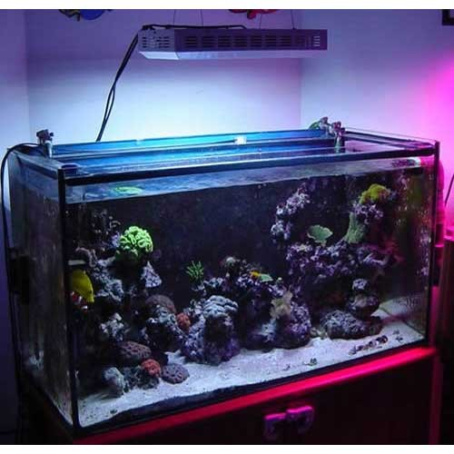 300w Led Aquarium Lighting For Growing Corals Commercial