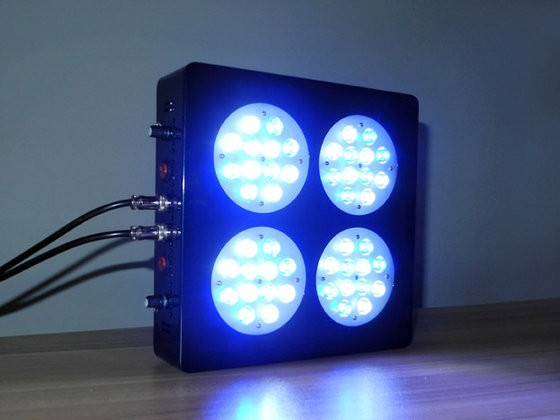 Apollo 4 Led Aquarium Light Bulbs For Grow Coral Lights