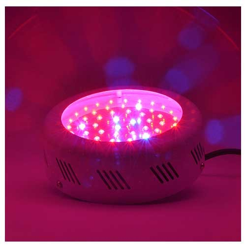 Cheap 50w Mini Ufo Led Grow Light For Indoor Growing Plant