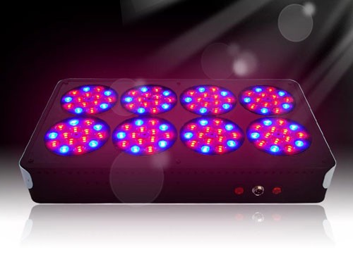 led grow light for hydroponic tomatoes nz 1 apllo 8 led grow light