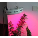 135W UFO LED Grow Light NASA RED And Blue For Growing Weed -1