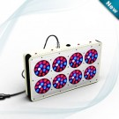 Apllo 8 LED Grow Light For Hydroponic Tomatoes NZ -1