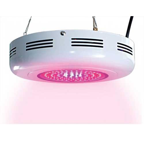 Buy Lights Online Nz: Buy 90W UFO LED Grow Lights Wellington Gardening